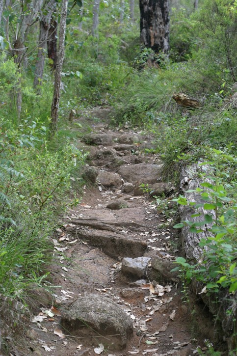 rocky-pathway_w483_h725